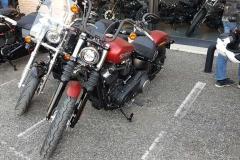 Open Day Harley Davidson